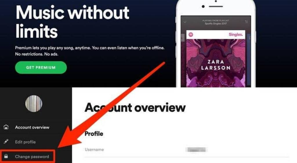 How To Change Spotify Password,spotify password change